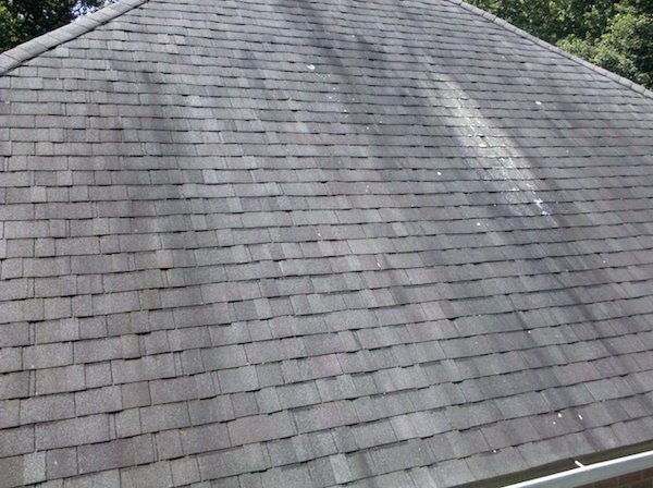 How to Remove and Prevent Roof Algae Growth